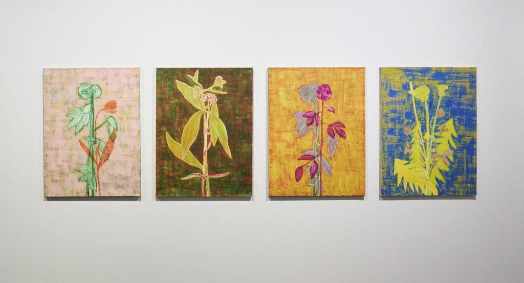 Four Flower Paintings – Flowers of Aune, Sinkka Keravas Art- and Museumcentrum, Installation view / Image Pekka Elomaa